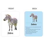 450 X 500 – ANIMALS FRONT & BACK