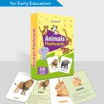 450 X 500 PX – ANIMALS FLASH CARDS BOX