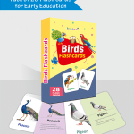 450 X 500 PX – BIRDS FLASH CARDS BOX